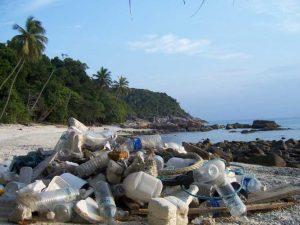 Why Beach Clean up matter
